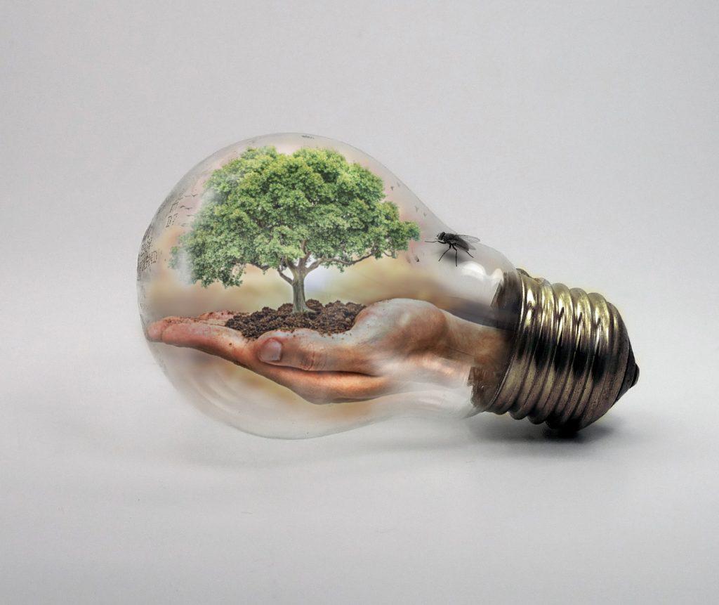 Glühbirne-Klimaschutzkonzept